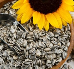 5+1 θαυματουργές τροφές που καταπολεμούν το άγχος & επιταχύνουν την αποκατάσταση  - Κυρίως Φωτογραφία - Gallery - Video