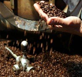 Good News: Η ελληνική ένωση καφέ είναι γεγονός κι αυτά είναι πολύ καλά νέα – Δείτε γιατί - Κυρίως Φωτογραφία - Gallery - Video