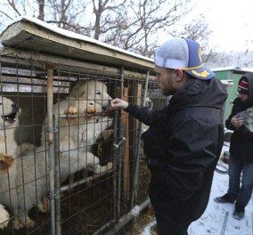 Ολυμπιακός σκιέρ μαζί με τον σύντροφο του έσωσαν 90 κουτάβια: Έκλεισαν σφαγείο σκύλων της Ν. Κορέας (ΦΩΤΟ - ΒΙΝΤΕΟ)   - Κυρίως Φωτογραφία - Gallery - Video
