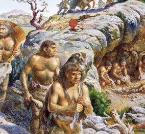 Νεάτερνταλ= καλλιτέχνες: Βρέθηκαν έργα τους όστρακα ηλικίας 115.000 ετών   - Κυρίως Φωτογραφία - Gallery - Video