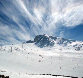 Μια μοναδική στιγμή: Βιολιά στον χιονισμένο Παρνασσό με τον φακό της Μαρίνας Βερνίκου (ΒΙΝΤΕΟ) - Κυρίως Φωτογραφία - Gallery - Video