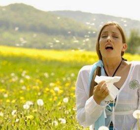Οι ανοιξιάτικες αλλεργίες συνδέονται με την βιταμίνη D; Ο Δημήτρης Γρηγοράκης μας εξηγεί - Κυρίως Φωτογραφία - Gallery - Video