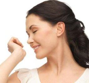 Αυτές είναι οι τροφές που θα σας κάνουν να μυρίζετε όμορφα! - Κυρίως Φωτογραφία - Gallery - Video