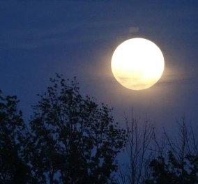 Έρχεται Σαββατόβραδο με Πανσέληνο- Μαγευτικές εικόνες απο το Ναύπλιο (ΦΩΤΟ) - Κυρίως Φωτογραφία - Gallery - Video