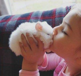 So cuteeee! Πανέμορφα & τρισχαριτωμένα κουνελάκια σε κλικς που ξεχωρίζουν (ΦΩΤΟ) - Κυρίως Φωτογραφία - Gallery - Video