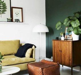 Ο Σπύρος Σούλης μας προτείνει 10 τρόπους για να φέρουμε την φύση στο σπίτι μας! - Κυρίως Φωτογραφία - Gallery - Video