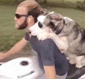Τι ωραία εικόνα! Νεαρός ξανθός & ο σκύλος του έβαλαν γυαλιά ηλίου, ανέβηκαν στη μηχανή και... (ΦΩΤΟ-ΒΙΝΤΕΟ) - Κυρίως Φωτογραφία - Gallery - Video
