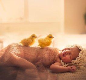 Cute, cute, cute! Κλικς που δεν υπάρχουν με μωράκια, σκυλάκια, παπάκια & πουλιά μας φτιάχνουν τη μέρα (ΦΩΤΟ) - Κυρίως Φωτογραφία - Gallery - Video
