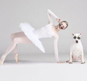 Ένα μοναδικό φωτογραφικό project: Μπαλαρίνες ποζάρουν με χαριτωμένα σκυλάκια σε υπέροχες χορευτικές φιγούρες! - Κυρίως Φωτογραφία - Gallery - Video