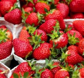 Καθαρίστε γρήγορα και εύκολα τον λεκέ από φράουλα στα ρούχα σας! Ιδού με ποιον τρόπο  - Κυρίως Φωτογραφία - Gallery - Video