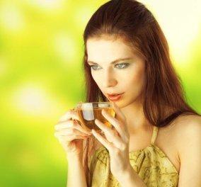 Φασκόμηλο - το «ελληνικό τσάι» αντισηπτικό αντιβακτηριακό - Ένα αφέψημα μόνο για το καλό του οργανισμού - Κυρίως Φωτογραφία - Gallery - Video