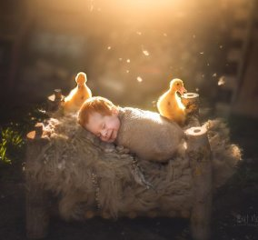 Αξιολάτρευτες πόζες με νεογέννητα μωρά μαζί με τα αγαπημένα τους κατοικίδια - Θα σας ξετρελάνουν! (ΦΩΤΟ)  - Κυρίως Φωτογραφία - Gallery - Video