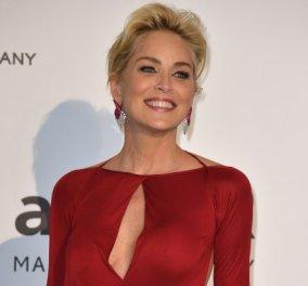 """Αυτό θα πει σταρ! Η υπέροχη Sharon Stone """"καταστρέφει"""" πορτραίτο της & το διασκεδάζει! (ΒΙΝΤΕΟ) - Κυρίως Φωτογραφία - Gallery - Video"""