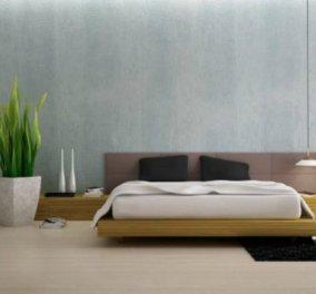 Σπύρος Σούλης: «Ποιο φυτό είναι ιδανικό για το υπνοδωμάτιο;» - Κυρίως Φωτογραφία - Gallery - Video
