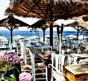 Porto Paradiso: Ένας παράδεισος με δροσιστικά κοκτέιλ & αυθεντικές ελληνικές γεύσεις δίπλα στα γαλαζοπράσινα νερά της Σκιάθου (φωτο) - Κυρίως Φωτογραφία - Gallery - Video