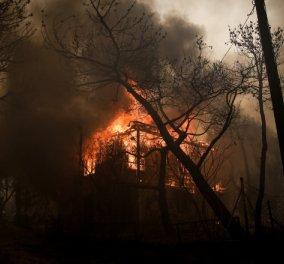 Σε πύρινο κλοιό η Αττική: Φωτιά σε Πεντέλη και Ραφήνα - Φωτογραφίες και Βίντεο - Κυρίως Φωτογραφία - Gallery - Video