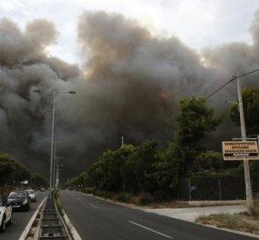 Oι Έλληνες εφοπλιστές στο πλευρό των πυρόπληκτων της Αττικής: Είμαστε έτοιμοι να προσφέρουμε    - Κυρίως Φωτογραφία - Gallery - Video