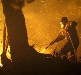 Ξέσπασε φωτιά και στα Χανιά - Στην πυρά τα σπίτια των κατοίκων (Φωτό) - Κυρίως Φωτογραφία - Gallery - Video