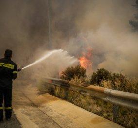 Κινέτα: Η αποτύπωση της καταστροφικής φωτιάς! Συγκλονιστικές εικόνες  - Κυρίως Φωτογραφία - Gallery - Video