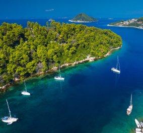 Εκεί που το πράσινο των δέντρων συναντά το μπλε της θάλασσας γεννήθηκε η ειδυλλιακή γη της Σκοπέλου - Κυρίως Φωτογραφία - Gallery - Video