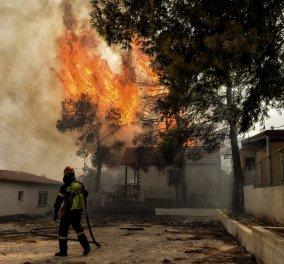 Πυρκαγιές στην Αττική: Τι γράφει ο διεθνής Τύπος για τις φωτιές - Πρώτο θέμα σε όλο τον κόσμο (Φωτό) - Κυρίως Φωτογραφία - Gallery - Video