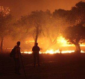 Πυρκαγιά στο Μάτι: Ο αριθμός των νεκρών είναι πλέον στους 97 - Ταυτοποιήθηκαν όλες οι σοροί - Κυρίως Φωτογραφία - Gallery - Video