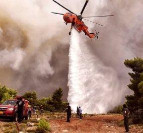 Πολύ υψηλός κίνδυνος πυρκαγιάς την Κυριακή - Οι οδηγίες της γενικής γραμματείας πολίτικης προστασίας - Κυρίως Φωτογραφία - Gallery - Video