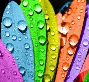 Ποιο είναι το χρώμα που ταιριάζει στον χαρακτήρα σου: Κόκκινο, κίτρινο, γκρι, μπλε πορτοκαλί... - Κυρίως Φωτογραφία - Gallery - Video