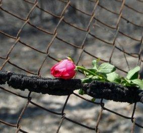 Τραγωδία χωρίς τέλος - Στους 89 οι νεκροί από τις φονικές πυρκαγιές - Κυρίως Φωτογραφία - Gallery - Video