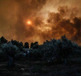 Εύβοια: Μαίνεται η πυρκαγιά - Δύο τα μέτωπα της φωτιάς - Κυρίως Φωτογραφία - Gallery - Video
