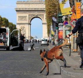 Παρίσι: Συναγερμός στο Σανζ Ελιζέ από ύποπτο όχημα - Κινητοποιήθηκε η αστυνομία (φώτο) - Κυρίως Φωτογραφία - Gallery - Video