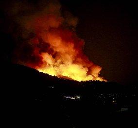 Μεγάλη φωτιά καίει τη Σάμο - Συνεχίζεται η μάχη με τις φλόγες - Κυρίως Φωτογραφία - Gallery - Video