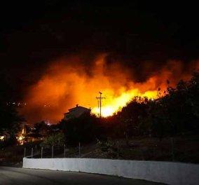 Απειλούνται κατοικημένες περιοχές από την πυρκαγιά στην Κεφαλονιά (Βίντεο) - Κυρίως Φωτογραφία - Gallery - Video