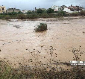 Έσπασε το ποτάμι στο Άργος - Έκκληση της πυροσβεστικής προς τον κόσμο να απομακρυνθεί (φώτο) - Κυρίως Φωτογραφία - Gallery - Video