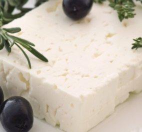 Το αρχαιότερο τυρί της Μεσογείου ίσως να ήταν η φέτα - Βρέθηκαν ίχνη ηλικίας τουλάχιστον 7.200 ετών - Κυρίως Φωτογραφία - Gallery - Video