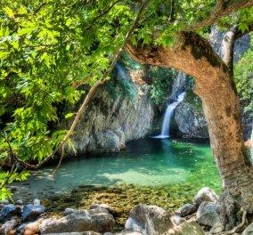 Φονιάς: Το πανέμορφο φαράγγι της Σαμοθράκης με τα γάργαρα νερά και τη μυστηριακή ατμόσφαιρα - Καταπληκτικό βίντεο - Κυρίως Φωτογραφία - Gallery - Video