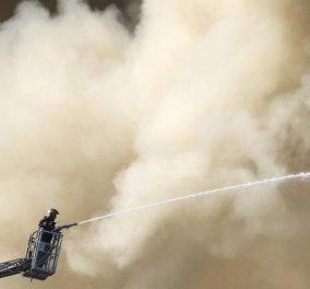 Πρύτανης Αχ. Ζώρας: Έσβησε η φωτιά στο πανεπιστήμιο Κρήτης - Με εντολή Τσίπρα τα μέτρα στήριξης φοιτητών (φώτο-βιντεο) - Κυρίως Φωτογραφία - Gallery - Video