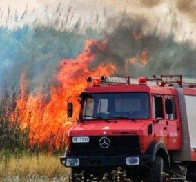Κεφαλονιά: Τέσσερα ενεργά μέτωπα φωτιάς πλήττουν το νησί - Κυρίως Φωτογραφία - Gallery - Video