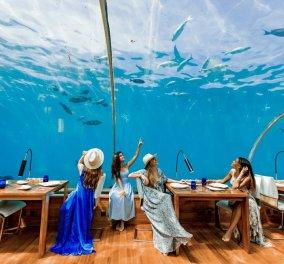 Εγκαίνια για την πρώτη υποθαλάσσια σουίτα στον κόσμο - Πόσο κοστίζει η βραδιά, δεν φαντάζεστε… - Κυρίως Φωτογραφία - Gallery - Video
