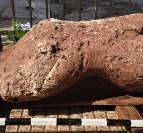 Οι κούροι της Αταλάντης στις πρώτες φωτογραφίες που κυκλοφόρησαν - Θαυμάστε τα υπέροχα αρχαιολογικά ευρήματα (φωτό) - Κυρίως Φωτογραφία - Gallery - Video