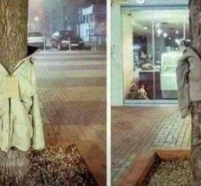 Υπέροχο! Στη Λάρισα ντύνουν τα δέντρα με μπουφάν για τους άστεγους - Κυρίως Φωτογραφία - Gallery - Video