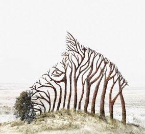 Oταν η τέχνη γεφυρώνει την πραγματικότητα με το όνειρο τότε το σουρεαλιστικό αποτέλεσμα είναι χάρμα - Φώτο  - Κυρίως Φωτογραφία - Gallery - Video