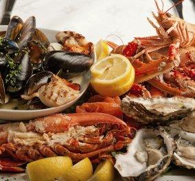 Αυτά τα θαλασσινά κάνουν καλό στη χοληστερόλη μας - Ποια είναι η συνιστώμενη ημερήσια πρόσληψη; - Κυρίως Φωτογραφία - Gallery - Video