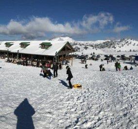 Χιονοδρομικό Κέντρο Καλαβρύτων: Ο must προορισμός για μια χριστουγεννιάτικη εξόρμηση - Βίντεο - Κυρίως Φωτογραφία - Gallery - Video
