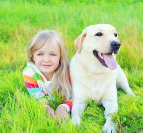 "Viral βίντεο: Σκυλάκια λαμπραντόρ παίζουν με τα παιδιά & μας ""λιώνουν"" την καρδιά   - Κυρίως Φωτογραφία - Gallery - Video"