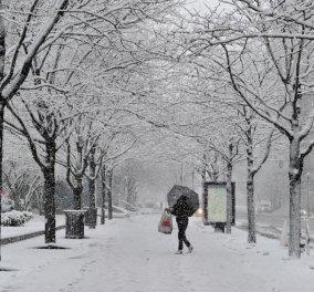 Έκτακτες οδηγίες από την Γ.Γ Πολιτικής Προστασίας ενόψει σφοδρής κακοκαιρίας & χιονιά - Κυρίως Φωτογραφία - Gallery - Video