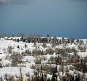 Πάμε στις Άλπεις της Καρδίτσας; - Η παγωμένη λίμνη Πλαστήρα & τα χιονισμένα έλατα, μοναδικό τοπίο - Κυρίως Φωτογραφία - Gallery - Video
