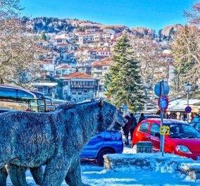 Μέτσοβο Ιωαννίνων: Παράδοση, γραφικά δρομάκια, πέτρινα σπιτάκια & αυθεντικές γεύσεις σε ένα πανέμορφο χιονισμένο τοπίο - Βίντεο  - Κυρίως Φωτογραφία - Gallery - Video