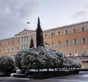 10 εκπληκτικές φωτογραφίες της χιονισμένης Αθήνας: Η Βουλή, ο «Δρομέας» και η Ακαδημία στα λευκά (Φωτό) - Κυρίως Φωτογραφία - Gallery - Video
