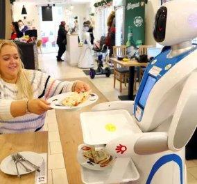 Τα ρομπότ σερβίρουν φαγητό αλλά & πολύ πλάκα σε καφετέρια της Βουδαπέστης -  Δείτε φωτό και βίντεο - Κυρίως Φωτογραφία - Gallery - Video